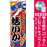 のぼり旗 (2673) 活いか 大漁旗風 [プレゼント付]