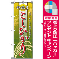のぼり旗 (2766) 新潟産こしひかり [プレゼント付]