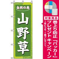 のぼり旗 (3247) 山野草 [プレゼント付]