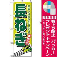 のぼり旗 (4350) 長ねぎ [プレゼント付]