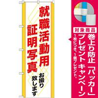 のぼり旗 (GNB-245) 就職活動用 証明写真 [プレゼント付]
