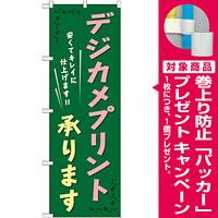 のぼり旗 (GNB-253) デジカメプリント承ります [プレゼント付]