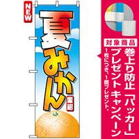 のぼり旗 (7403) 夏みかん 蜜柑 イラスト [プレゼント付]