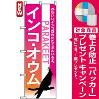 のぼり旗 (7521) インコ オウム [プレゼント付]