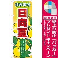 のぼり旗 (7977) 旬の果実 日向夏 [プレゼント付]