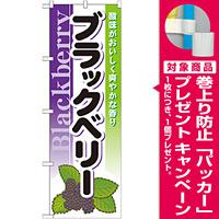 のぼり旗 (7979) ブラックベリー [プレゼント付]