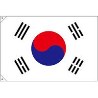 販促用国旗 韓国 サイズ:小 (23692)