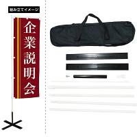 専用ケース付持ち運びポール (のぼりポール・台一式セット)
