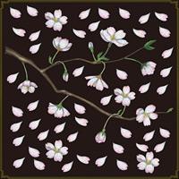 桜イラスト 看板・ボード用イラストシール (W285×H285mm)
