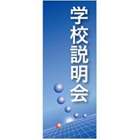 企業向けバナー 学校説明会 ブルー(青)背景 素材:トロマット(厚手生地) (61545)