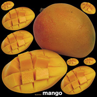 マンゴ 看板・ボード用イラストシール (W285×H285mm)