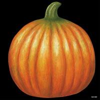 デコシール かぼちゃ サイズ:ビッグ W600×H600 (61884)