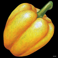 デコシール パプリカ(黄色) サイズ:ビッグ W600×H600 (61887)