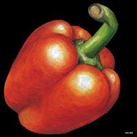 デコシール パプリカ(赤色) サイズ:ビッグ W600×H600 (61888)