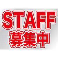 ウィンドウシール 片面印刷 表示:STAFF募集中 (6870)