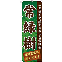 のぼり旗 表示:常緑樹 (GNB-1074)