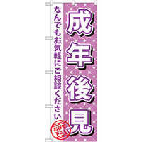 のぼり旗 成年後見 (GNB-1091)
