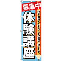 のぼり旗 体験講座 募集中 (GNB-1584)