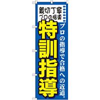 のぼり旗 特訓指導 (GNB-1594)
