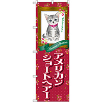 のぼり旗 アメリカンショートヘアー (GNB-2418)