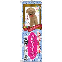 のぼり旗 トイプードル シルバーベージュ 入荷 (GNB-2460)