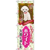 のぼり旗 トイプードル ホワイト 入荷 (GNB-2465)