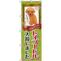 のぼり旗 トイプードル入荷 (GNB-2467)