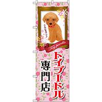 のぼり旗 トイプードル専門店 (GNB-2468)