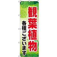のぼり旗 観葉植物各種ございます (GNB-2531)