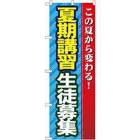 のぼり旗 夏期講習 生徒募集 (GNB-69)