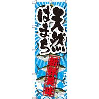 のぼり旗 天然はまち 新鮮美味 (SNB-2363)
