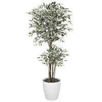 【2019年新商品】【送料無料】トロピカルベンジャミン斑入り 1.8 (造花) 高さ180cm 光触媒 (167F570)