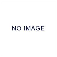 手動清掃用品 パワーローター専用オプション スペアブラシ 本体規格:パワーローター6000 (CL-450-114-0)