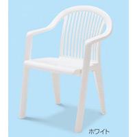 樹脂製 ガーデンフィジー 仕様:アームチェア カラー:ホワイト (MZ-595-350-8)