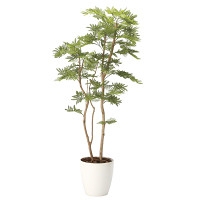 【送料無料】【2020年新商品】ねむの木1.8(ポリ製 (人工観葉植物) 高さ180cm 光触媒機能付 (2106A460)
