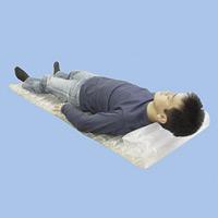 防災対策用品 簡便エアーマット 50枚入り (380142)
