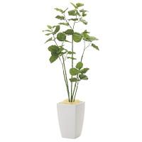 【2019年新商品】【送料無料】アーバンブランチウンベラータ1.8 (造花) 高さ180cm 光触媒 (943A650)
