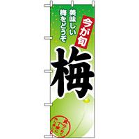 のぼり旗 (1374) 梅