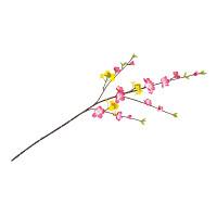 ミックススプレイ菜の花/桃