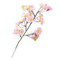 ニュー桜スプレイ