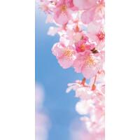 タペストリー桜花びら(防炎)