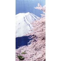 タペストリー富士桜(防炎)