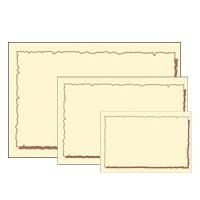色付ショーカード   大 17-5394 (5セット)