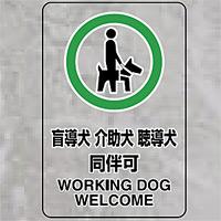 透明ステッカー 盲導犬 介護犬・・ 大 (807-55)