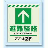 床設置用蓄光・避難口誘導標識 避難経路 2F 360×300 (824-202)
