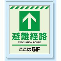 床設置用蓄光・避難口誘導標識 避難経路 6F 360×300 (824-206)