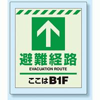 床設置用蓄光・避難口誘導標識 避難経路 B1F 360×300 (824-211)