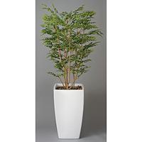 アートゴールデンツリー (人工観葉植物) 高さ180cm 光触媒 (114A850)