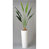 アートトラベラーズパーム (人工観葉植物) 高さ210cm 光触媒 (117A700) (※送料見積り)