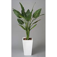 【送料無料】ストレチアW (人工観葉植物) 高さ130cm 光触媒 (131A400)
